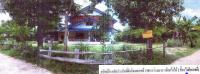 บ้านเดี่ยวหลุดจำนอง ธ.ธนาคารอาคารสงเคราะห์ บุรีรัมย์ ประโคนชัย ไพศาล